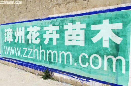 www.zzhhmm.com